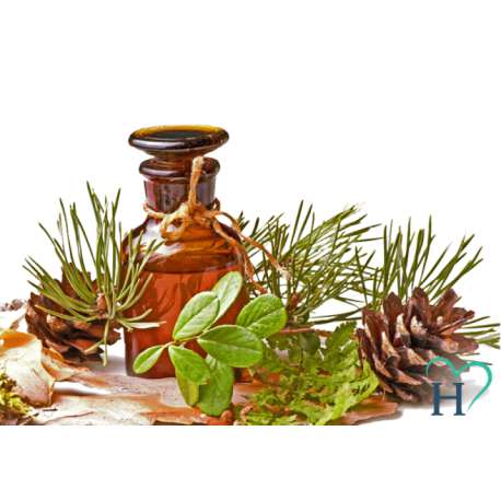 Olejek eteryczny z drzewa herbacianego (10ml) HALCAMP